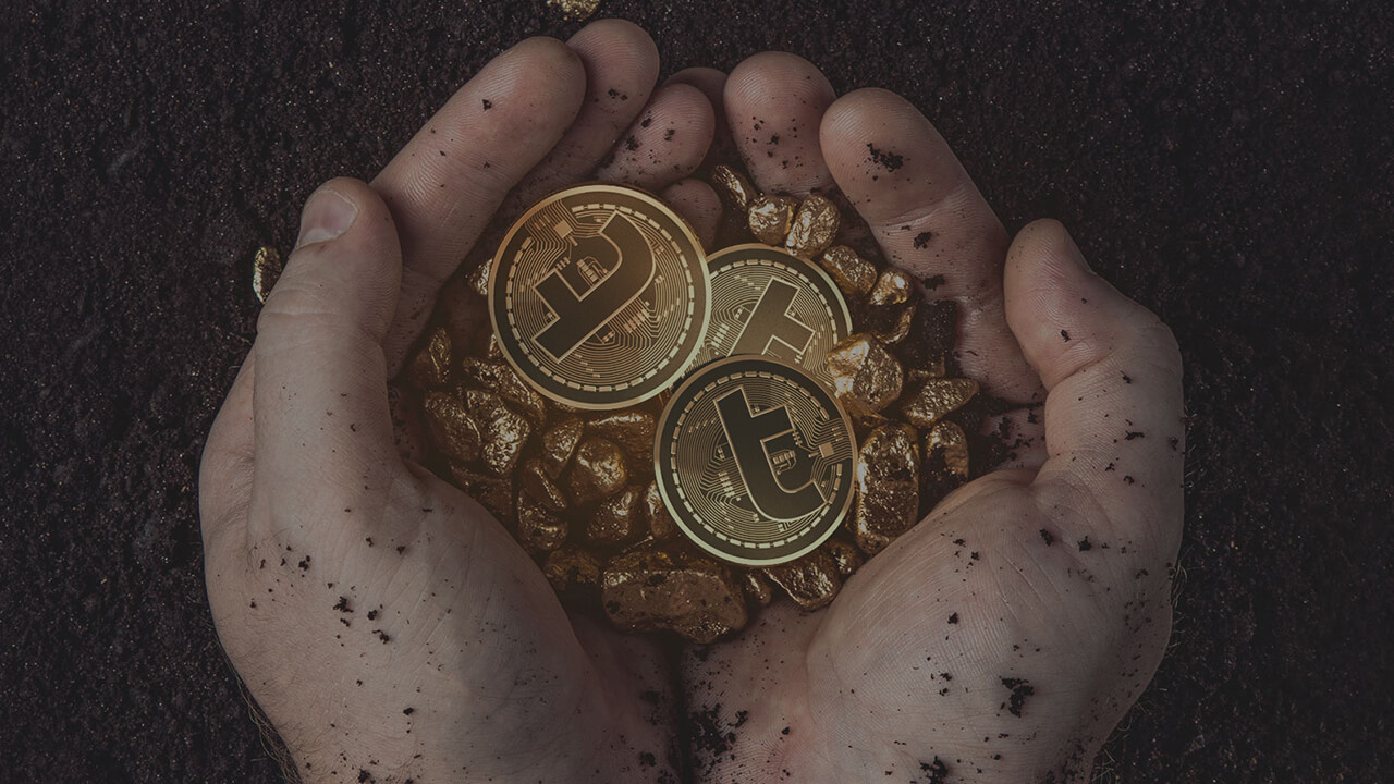 Creator Turcoin fled with investors ' money.