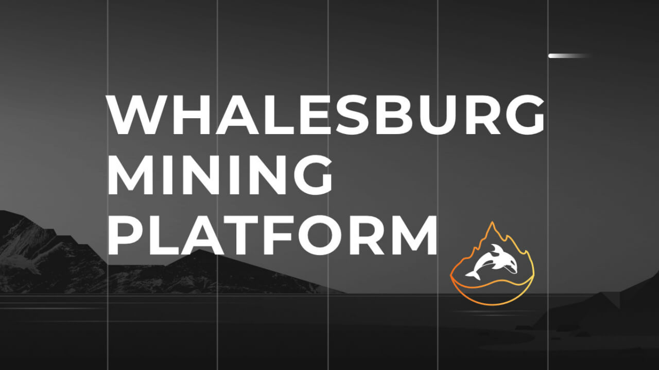 Whalesburg Review of a mining pool Statistics and General information